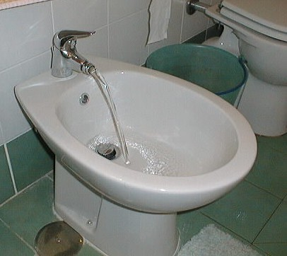 how to properly use a bidet