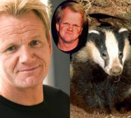 Gordon ramsey badger-Porn-star