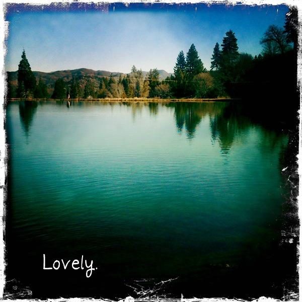 Lakecopy