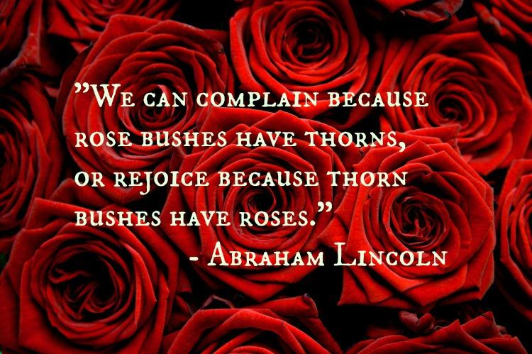Roseslincoln